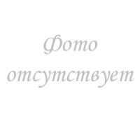 «Совершенно лично и доверительно!»: Б. А. Бахметев – В. А. Маклаков. Переписка. В 3-х т. Том 2